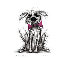 Buster the dog Photographic Print