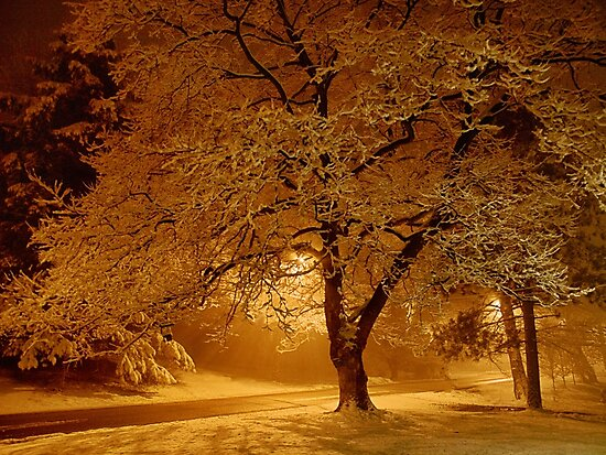 Early One  Morning - Erie, PA by Kathy Weaver
