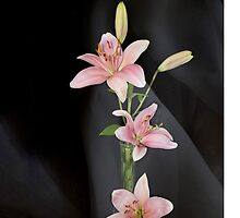 Hearts and Lilies by Kathy Weaver