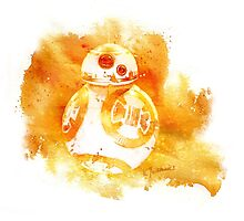 This is the droid you are looking for Photographic Print