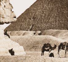 Vintage Photographs and prints of Egypt Sticker