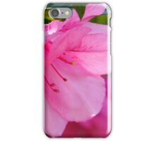 Spring in Open Shade iPhone Case/Skin