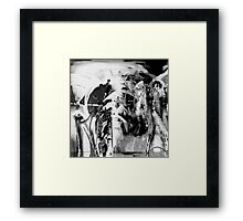 BW 004 Framed Print