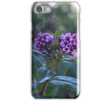 Hebe iPhone Case/Skin