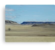 Prairie Buttes with Lone Tree Canvas Print
