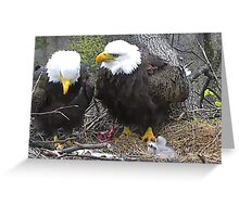 President and First Lady Eagles If you like, please purchase, try a cell phone cover thanks Greeting Card