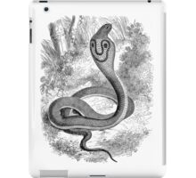 Vintage Snake Hooded Serpent Illustration Retro 1800s Black and White Snakes Reptile Image iPad Case/Skin