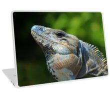 Mexican Spinytailed Iguana Laptop Skin