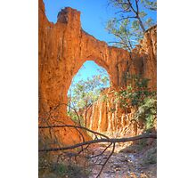 Through The Arch At Golden Gully Photographic Print
