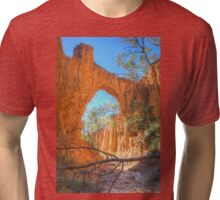 Through The Arch At Golden Gully Tri-blend T-Shirt