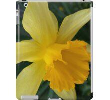 Lent-lily iPad Case/Skin