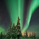 Magic winter night by Priska Wettstein