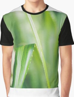 Tranquil Green Graphic T-Shirt