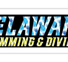 University of Delaware Swimming & Diving  Sticker
