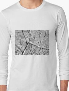 Looking Up Black and White Long Sleeve T-Shirt