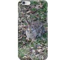 I'm supposed to deliver what?!  Happy Easter! iPhone Case/Skin