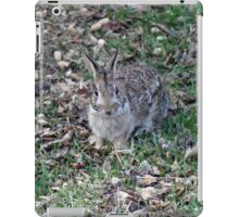 I'm supposed to deliver what?!  Happy Easter! iPad Case/Skin