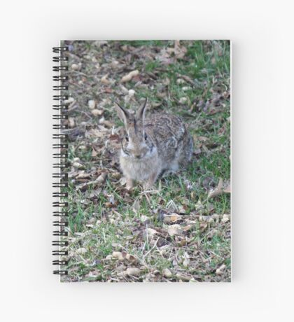 I'm supposed to deliver what?!  Happy Easter! Spiral Notebook