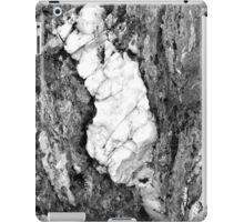 Jay Peak iPad Case/Skin