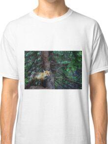 Fox in Colorado Classic T-Shirt