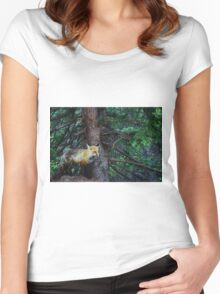 Fox in Colorado Women's Fitted Scoop T-Shirt
