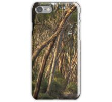 Wattle Grove January iPhone Case/Skin