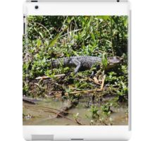 Guess What I See iPad Case/Skin