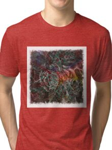 The Atlas of Dreams - Color Plate 13 Tri-blend T-Shirt