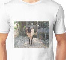 Buckskin Pony Unisex T-Shirt