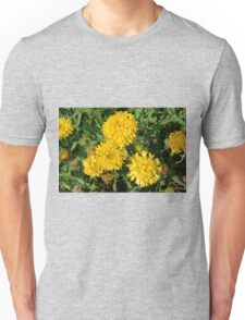 Yellow flowers in the garden. Unisex T-Shirt
