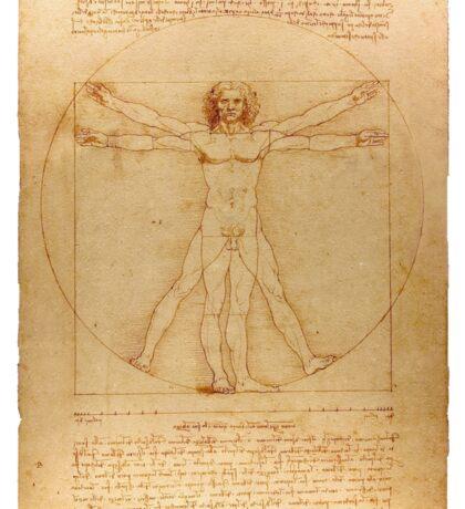Vitruvian Man - Leonardo da Vinci Sticker