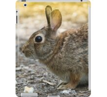 rabbit in the woods iPad Case/Skin