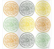 Colored fruit slices pattern Poster