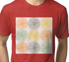 Colored fruit slices pattern Tri-blend T-Shirt