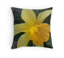 Lent-lily Throw Pillow