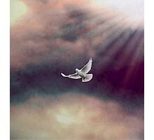 A Voice from Heaven Photographic Print