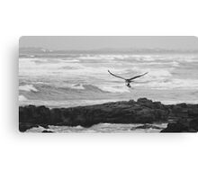 Bird of Prey Flying Over The Ocean Canvas Print