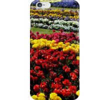 Flower Gardens Toowoomba Queensland Australia iPhone Case/Skin