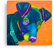 "Colourful Black Lab ""Cooper""  Canvas Print"