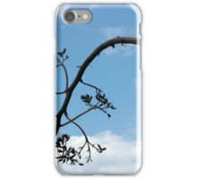 Aloe Vera Plant iPhone Case/Skin
