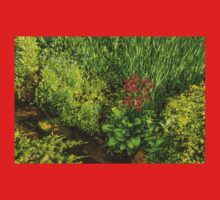 Impressions of Gardens - a Miniature Spring Creek with a Red Primrose  Baby Tee