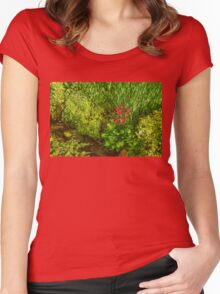 Impressions of Gardens - a Miniature Spring Creek with a Red Primrose  Women's Fitted Scoop T-Shirt