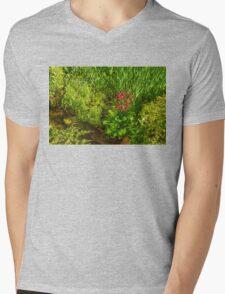 Impressions of Gardens - a Miniature Spring Creek with a Red Primrose  Mens V-Neck T-Shirt