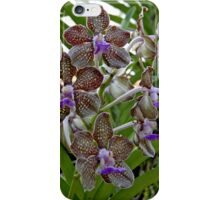 Variegated Orchids iPhone Case/Skin