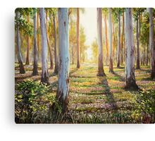 Morning Canvas Print