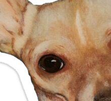 Chihuahua Dog Portrait  Sticker
