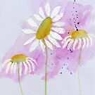 Daisies #13 – Daily painting #765 by Simon Rudd