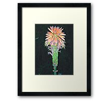 Wacky flower Framed Print