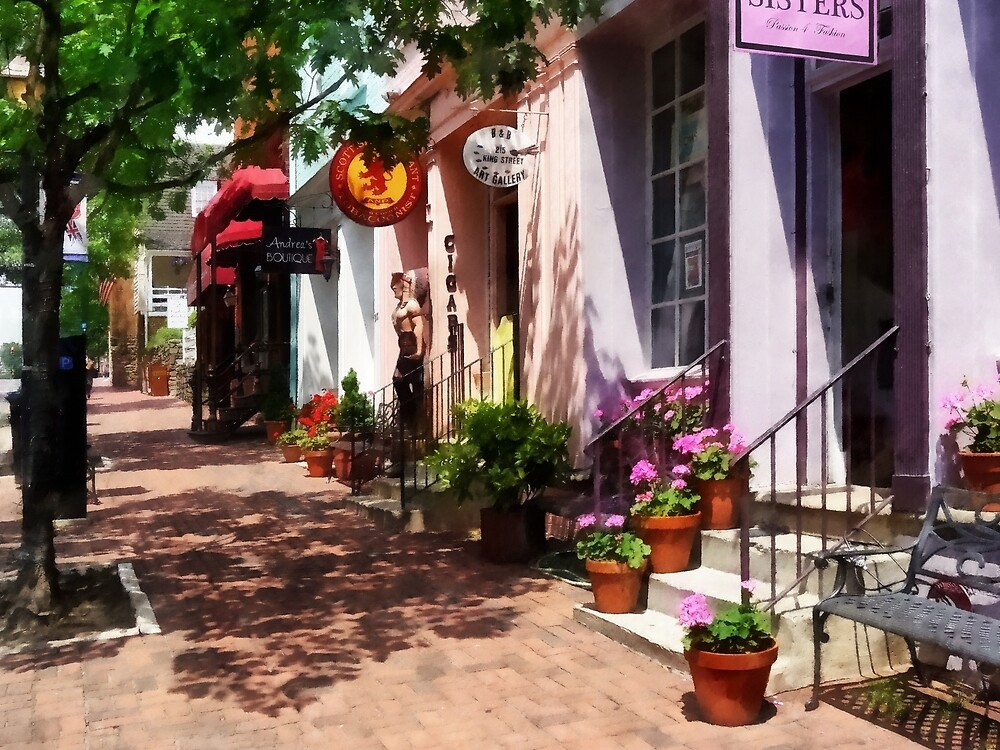 Alexandria VA - Street With Art Gallery and Tobacconist  by Susan Savad