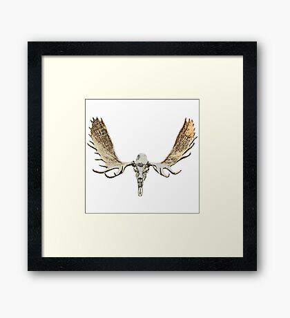 Moose skull Framed Print